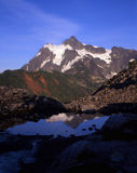 Mt. Shuksan (V). Mt. Shuksan photographed from a trail with a reflection royalty free stock photography