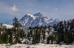 Mt Shuksan, WA Стоковое Фото
