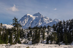 Mt Shuksan, WA Stock Photo