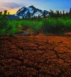 Mt Shuksan, Washington State Photographie stock libre de droits