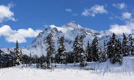 Mt Shuksan in Winter Royalty Free Stock Images