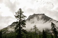 Mt Siguniang scenery in Sichuan, China Royalty Free Stock Photos