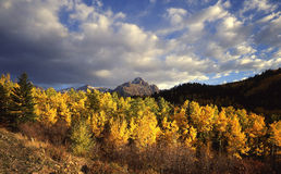 Mt. Sneffels. In the Uncompahgre National Forest during autumn stock photos