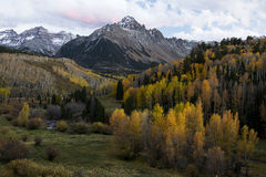 Mt. Sneffels Autumn. Autumn colors of Mt. Sneffels in the San Juan Mountains of Southwest Colorado Royalty Free Stock Images