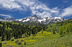 Mt. Sneffels en juin Images libres de droits