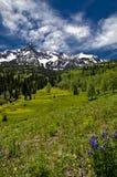Mt. Sneffels en junio #2 Fotos de archivo
