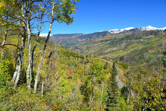 Mt Sopris during foliage season in Colorado. Landscape view of snow covered Mt Sopris in Colorado with an aspen tree in the foreground stock photography
