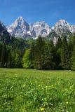 Mt. Spik from Jasenje Stock Photography