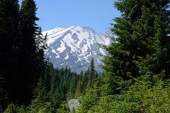 Mt St Helens как увидено от южной стороны стоковое фото
