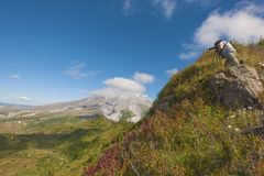 Mt St Helens Gifford Pinchot National Forest images libres de droits