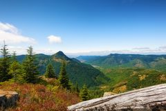 Mt. St. Helens Gifford Pinchot National Forest. Hiking in Gifford Pinchot National Forest near Mt St. Helens afford vast views such as this over looking the Stock Image