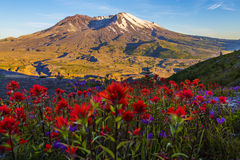 Mt St Helens Stock Photo