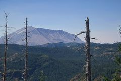 Mt St Helens 2280 royalty free stock photos