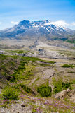 Mt. St. Helens Notional Monument. View from Johnston Observatory at Mt. St. Helens, showing the area's substantial recovery since the June 1980 volcanic eruption Royalty Free Stock Images