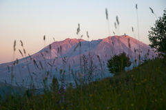Mt St. Helens am Sonnenuntergang Lizenzfreies Stockfoto