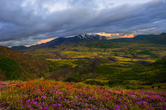 Mt St Helens at Sunset Stock Image