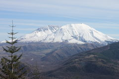 Mt St. Helens, Washington State Royalty Free Stock Images