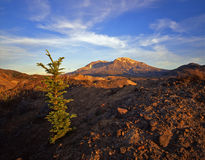 Mt. St. Hellens 4(H) Royalty Free Stock Photo