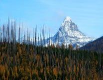 Mt-St Nicolas, efter branden Royaltyfria Bilder