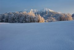Mt. Stol in the winter Royalty Free Stock Photo