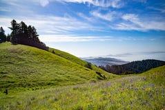 Mt Tam an einem Frühlings-Tag San Francisco übersehend stockbilder