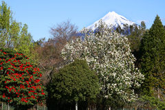 Mt Taranaki Photographie stock