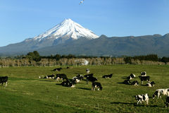 Mt Taranaki Image libre de droits