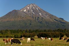 Mt. Taranaki Egmont国家公园 免版税图库摄影