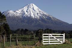 Mt Taranaki/egmont And Fence. Mt Taranaki/Egmont, over farm land with a gate in the front Royalty Free Stock Photo