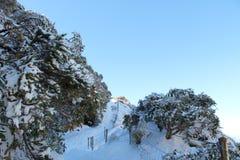 Mt Taranaki Wycieczkuje ślad fotografia stock