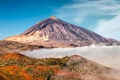Mt-teide Royaltyfria Bilder