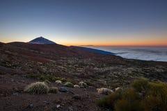 Mt Teide vulkan på solnedgången Royaltyfri Fotografi