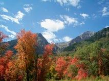 Mt Timpanogos在犹他 图库摄影