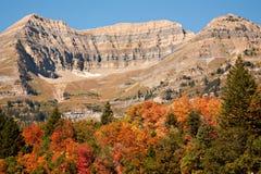 Mt. Timpanogos, Utah, con colores de la caída Imagen de archivo libre de regalías