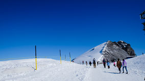 Mt Titlis i Schweiz Royaltyfri Foto