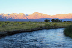 Mt. Tom and the Owens River Royalty Free Stock Photos