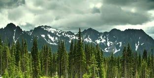 Mt. Un stationnement national plus pluvieux Photo libre de droits