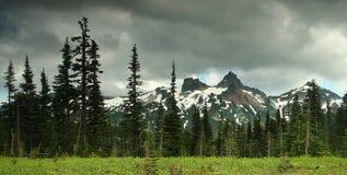Mt. Un stationnement national plus pluvieux Photographie stock