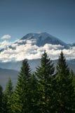 Mt. Un stationnement national plus pluvieux Images stock