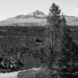 Mt Washington nelle montagne della cascata con un campo del roc della lava Immagini Stock Libere da Diritti