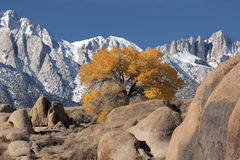 Mt. Whitney From The Alabama Hills. View of Mt. Whitney and the eastern Sierra's from the Alabama Hills near Lone Pine, Ca. USA Royalty Free Stock Photos