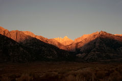Mt.Whitney at dawn Royalty Free Stock Photos