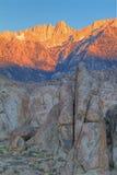 Mt. Whitney at Sunrise Royalty Free Stock Photo