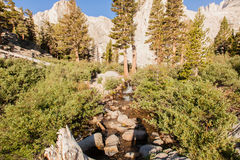 Mt Whitney Trail Royalty Free Stock Image