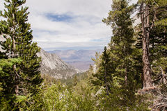 Mt Whitney Trail Stock Photos