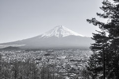 mt widok Washington czarny i Biały Zdjęcie Royalty Free