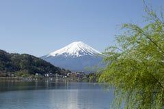 mt widok Washington Fuji od Kawaguchiko jeziora w wiośnie obraz royalty free