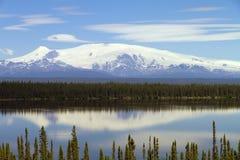 Mt Wrangell Imágenes de archivo libres de regalías