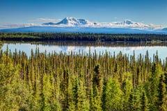 Mt wrangell стоковые изображения rf