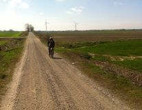 Велосипедист MTB в пути грязи Стоковое фото RF